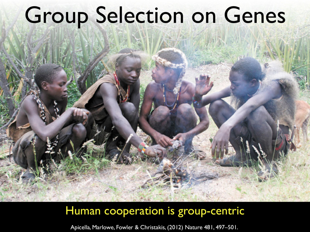Human cooperation is group-centric Apicella, Ma...