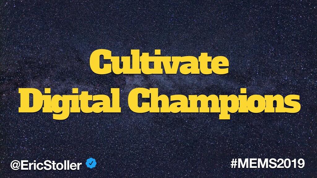 Cultivate Digital Champions @EricStoller #MEMS2...