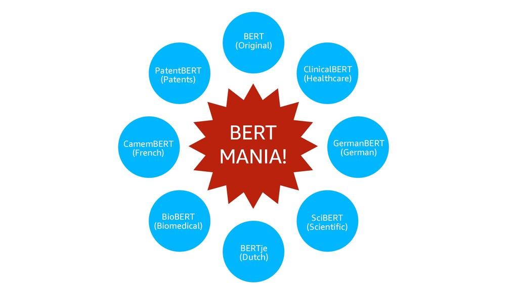BioBERT (Biomedical) BERTje (Dutch) SciBERT (Sc...