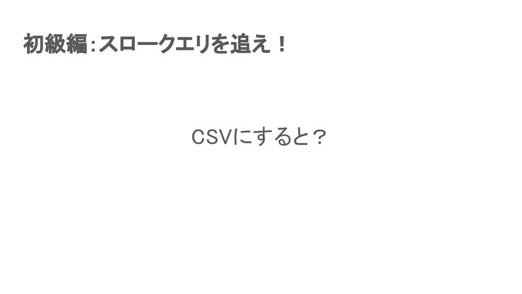初級編:スロークエリを追え! CSVにすると?