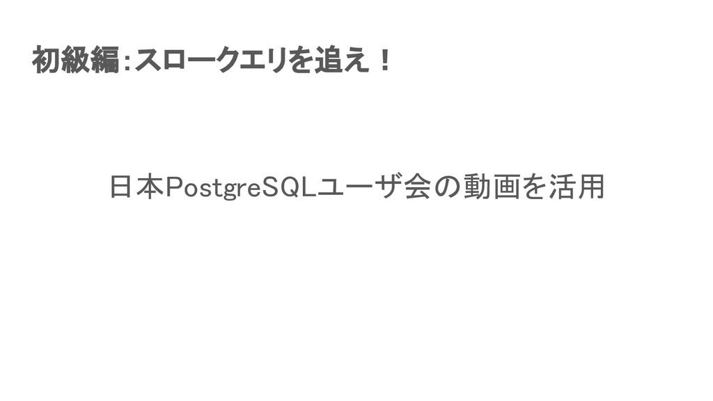 初級編:スロークエリを追え! 日本PostgreSQLユーザ会の動画を活用
