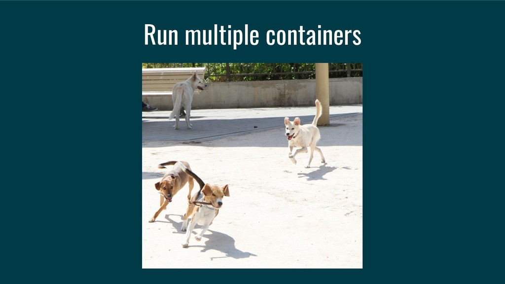 Run multiple containers