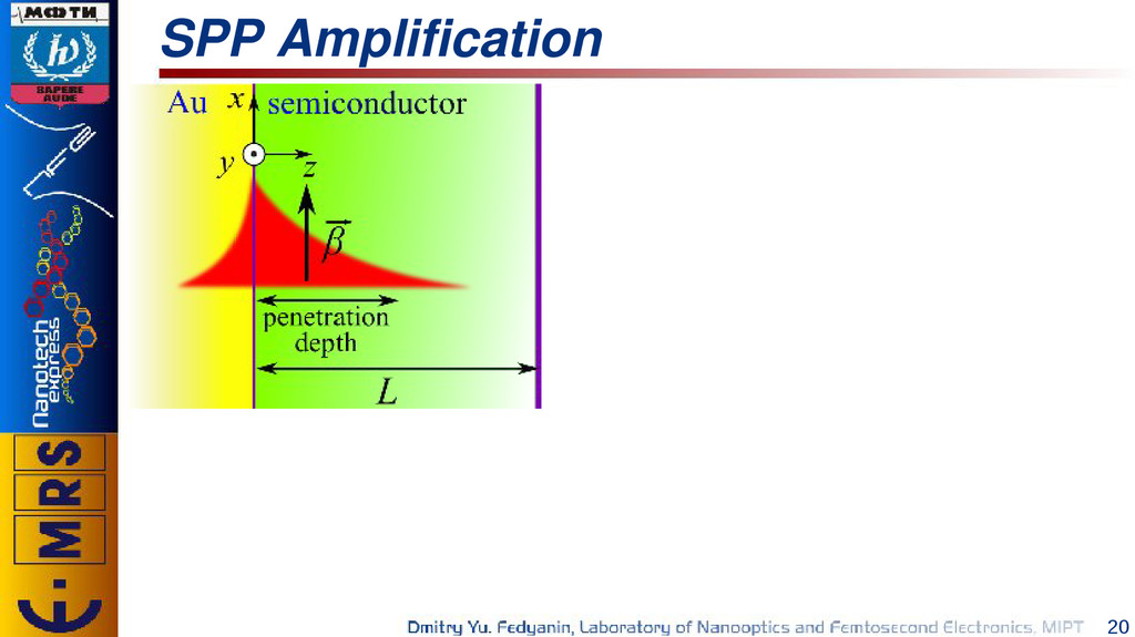 20 SPP Amplification