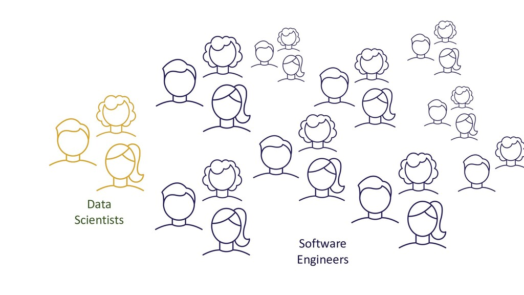 Data Scientists Software Engineers