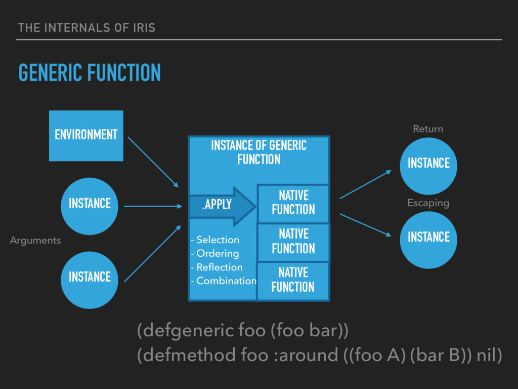 THE INTERNALS OF IRIS GENERIC FUNCTION INSTANCE...