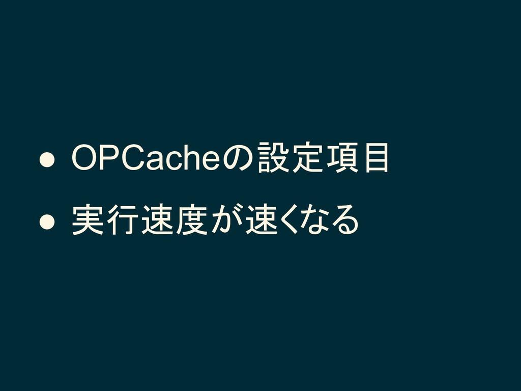 ● OPCacheの設定項目 ● 実行速度が速くなる