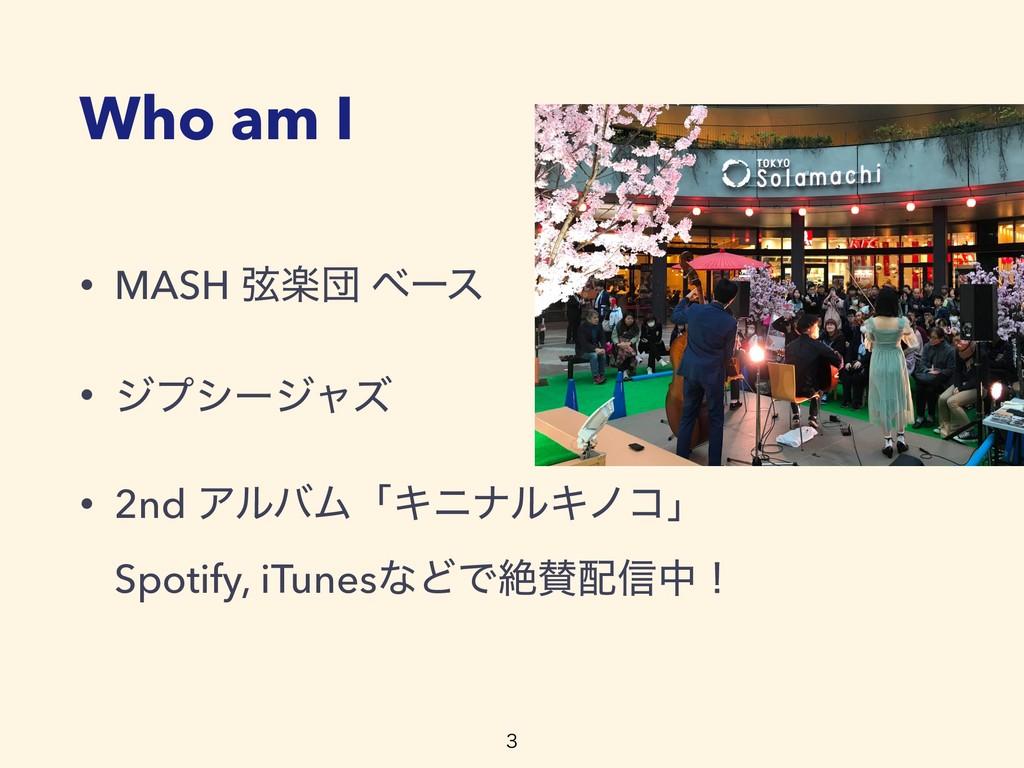 • MASH ݭָஂ ϕʔε • δϓγʔδϟζ • 2nd ΞϧόϜʮΩχφϧΩϊίʯ S...