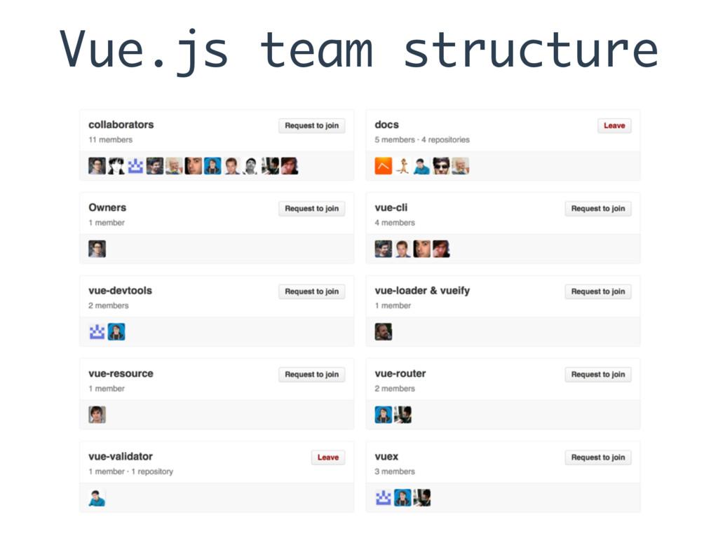 Vue.js team structure