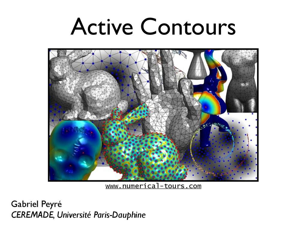 Active Contours Gabriel Peyré CEREMADE, Univers...