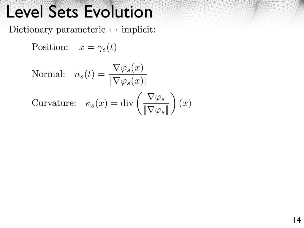 Level Sets Evolution 14 Dictionary parameteric ...