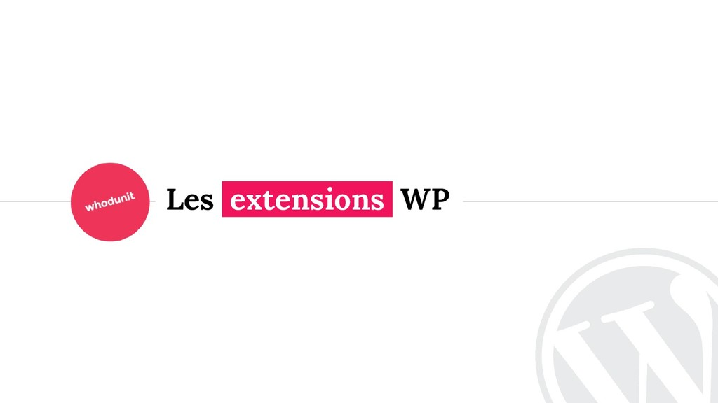 <> Les extensions WP