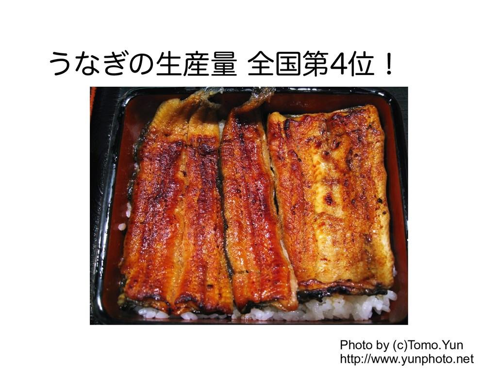うなぎの生産量 全国第4位! Photo by (c)Tomo.Yun http://www....