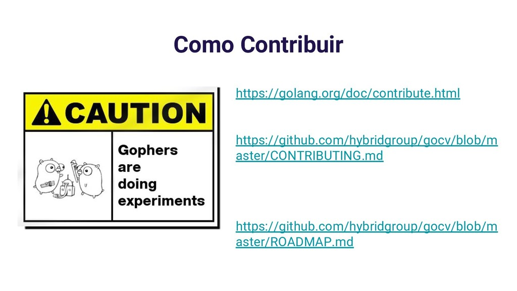 Como Contribuir https://golang.org/doc/contribu...