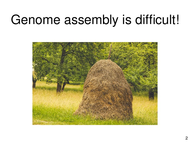 Genome assembly is difficult! 2