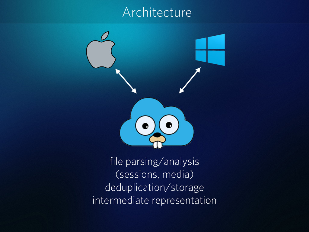 Architecture file parsing/analysis (sessions, m...
