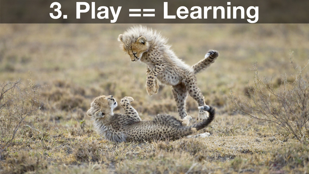 3. Play == Learning