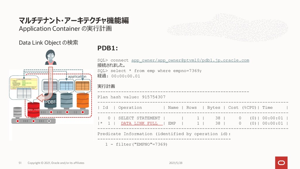 Application Container の実行計画 Data Link Object の検...