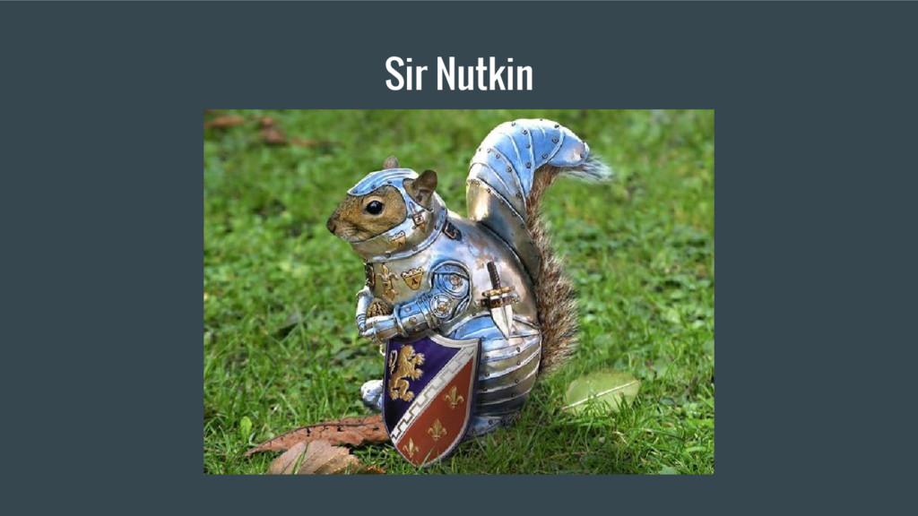 Sir Nutkin