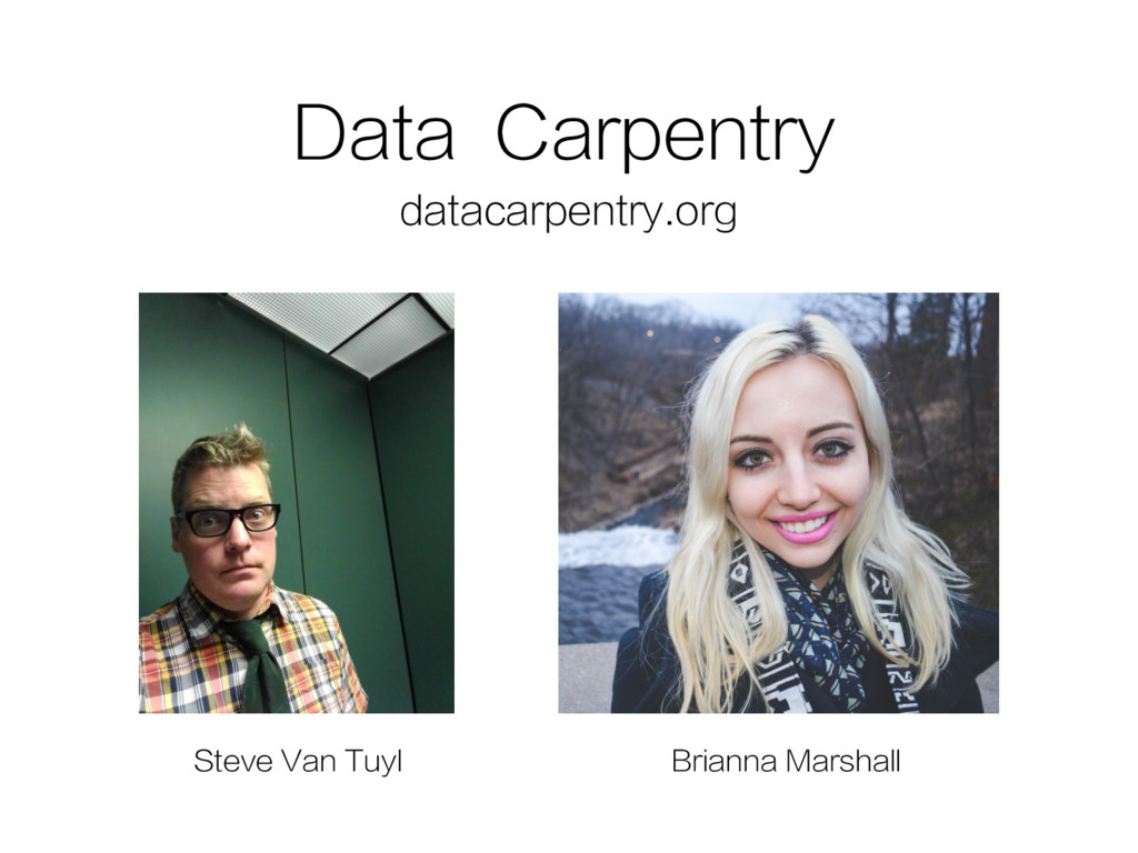 Data Carpentry datacarpentry.org Brianna Marsha...