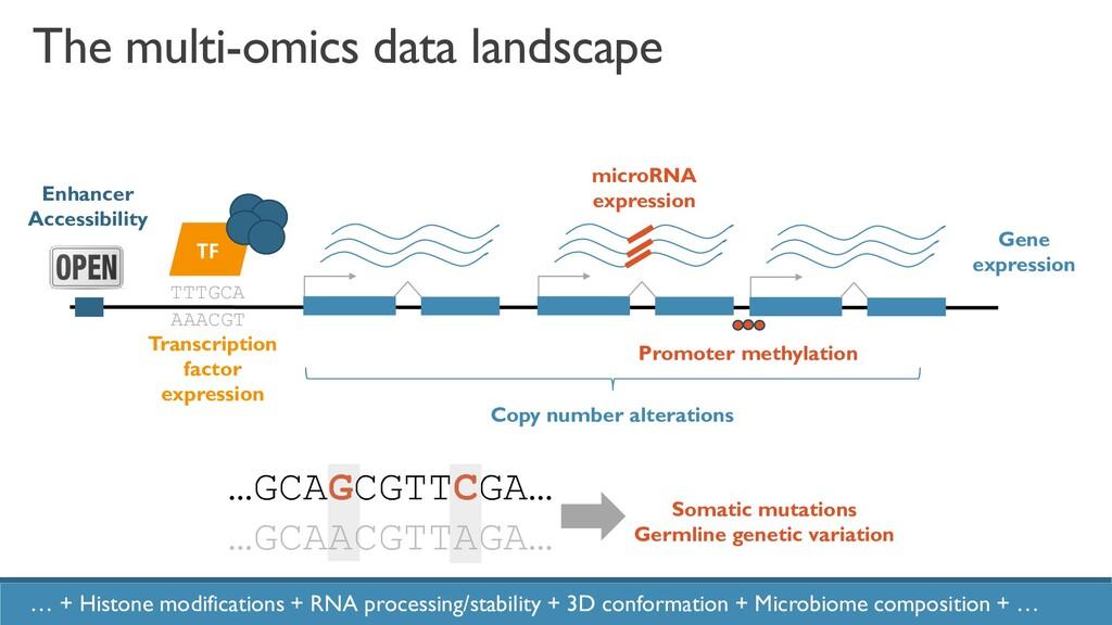 2 Gene expression TTTGCA AAACGT TF Transcriptio...