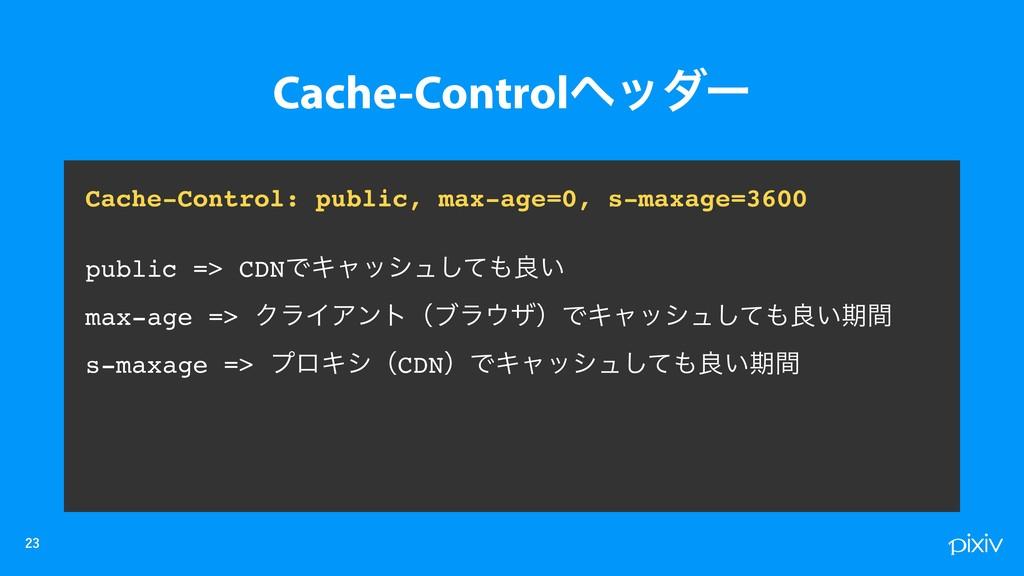 Cache-Control: public, max-age=0, s-maxage...