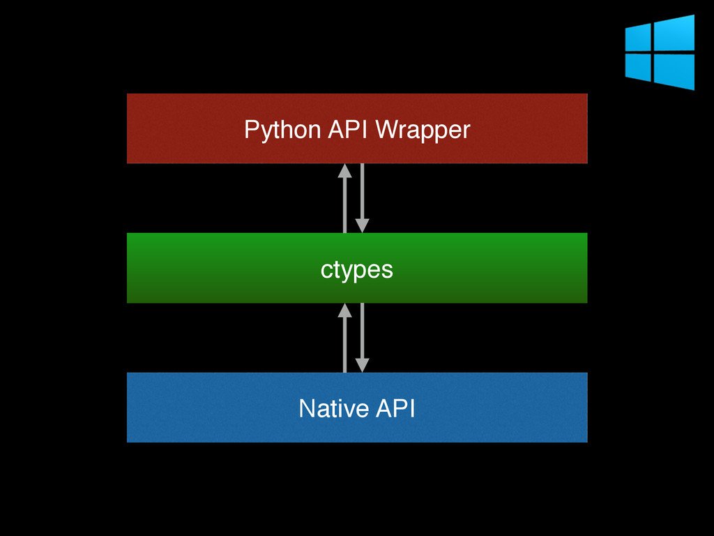 Native API Python API Wrapper ctypes