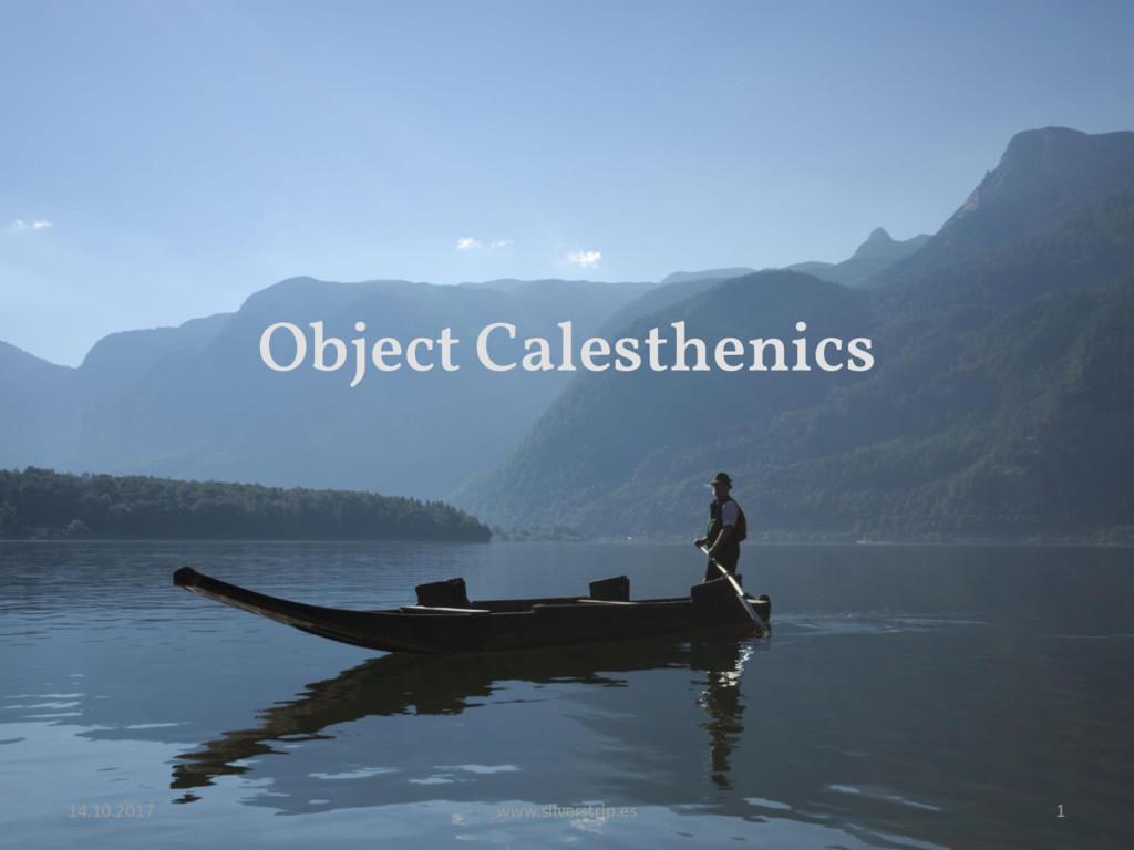 Object Calesthenics 14.10.2017 www.silverstrip....