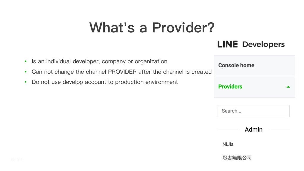 What's a Provider? • Is an individual developer...