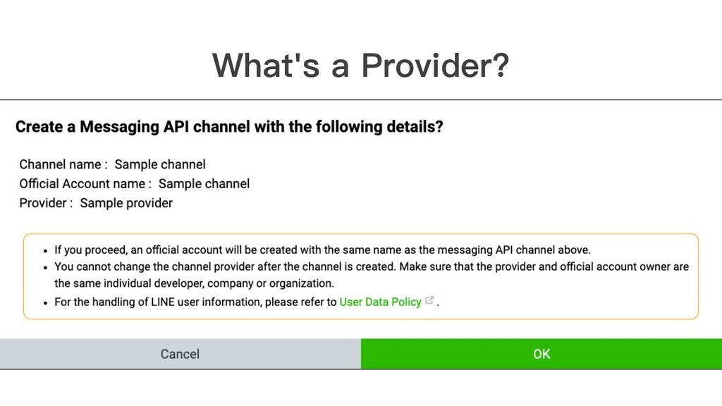 What's a Provider?