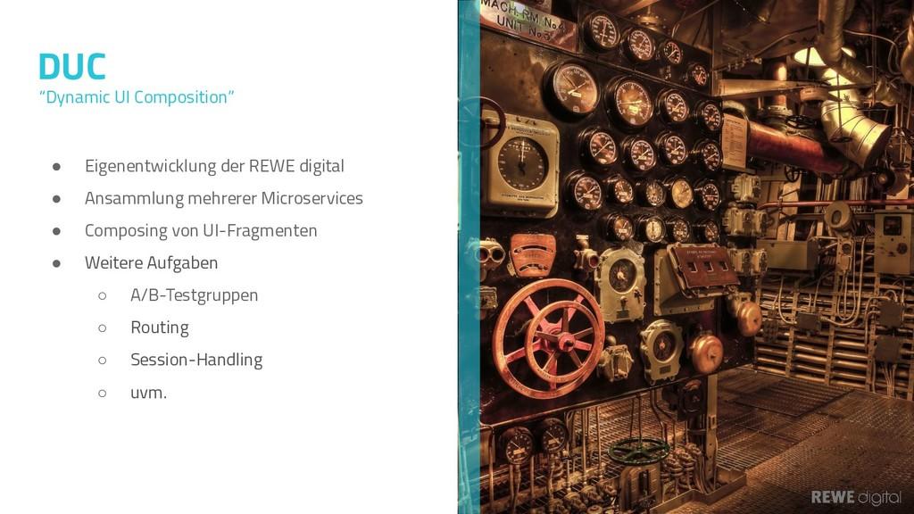 DUC ● Eigenentwicklung der REWE digital ● Ansam...