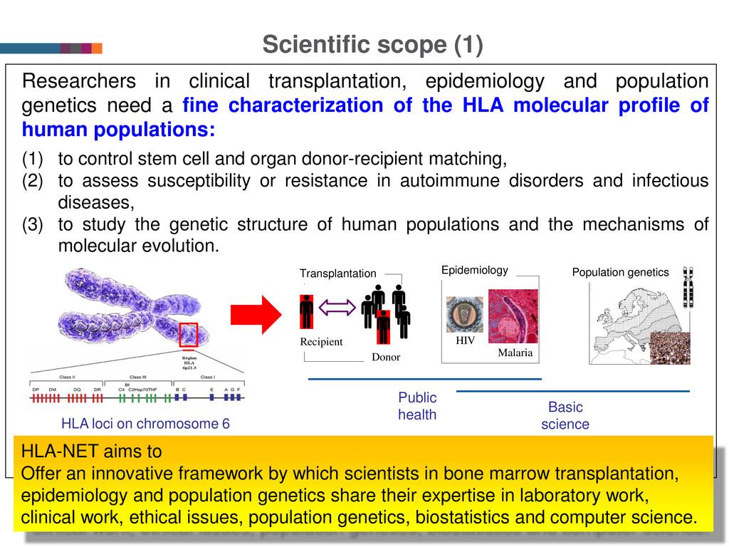 Scientific scope (1) 2 Researchers in clinical ...