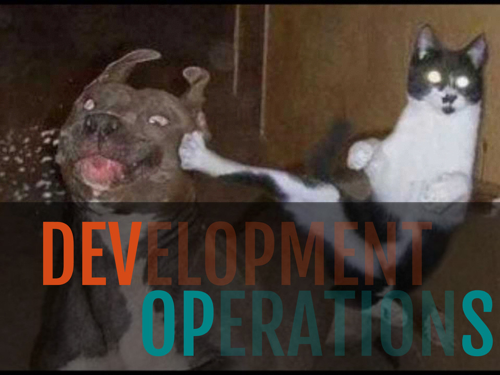 DEVELOPMENT OPERATIONS