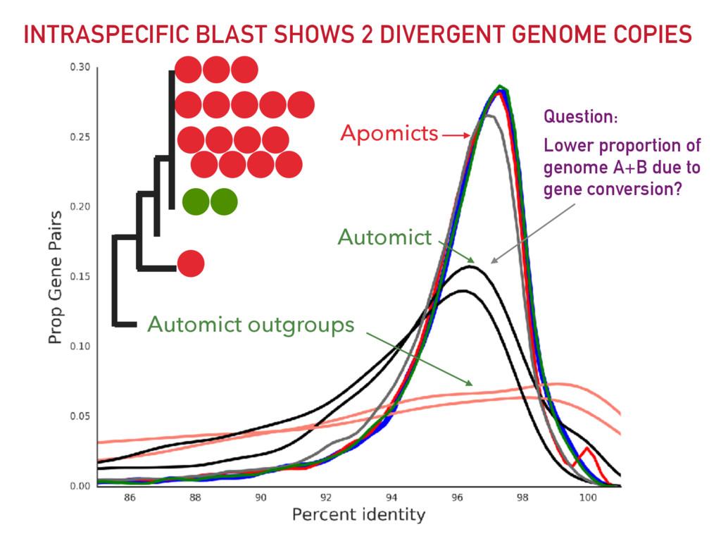INTRASPECIFIC BLAST SHOWS 2 DIVERGENT GENOME CO...
