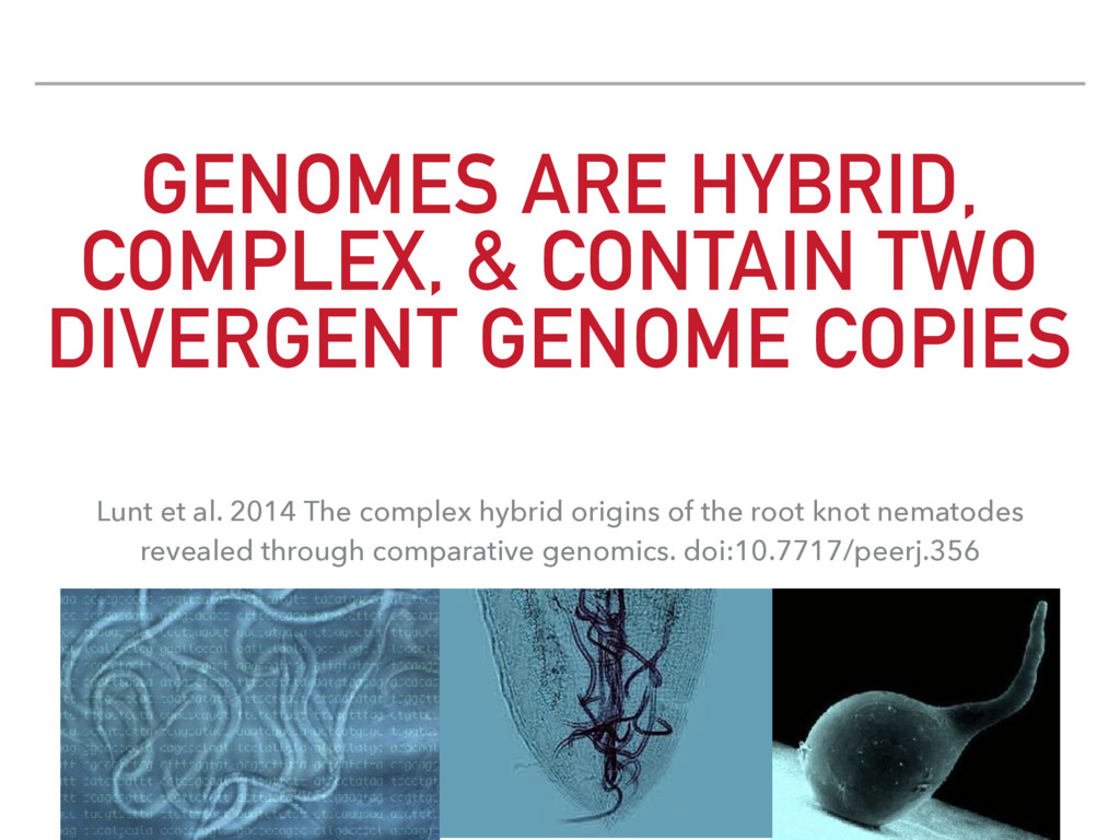 GENOMES ARE HYBRID, COMPLEX, & CONTAIN TWO DIVE...
