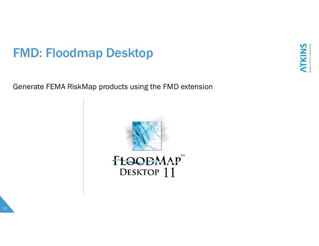 FMD: Floodmap Desktop 12 Generate FEMA RiskMap ...