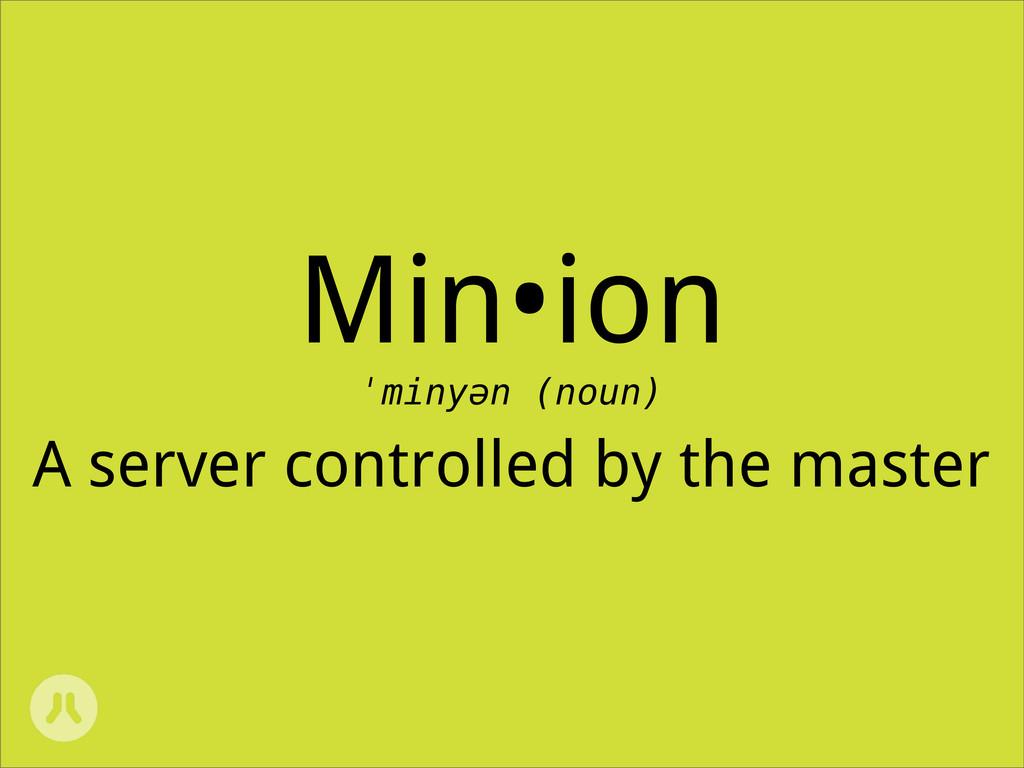 Min•ion ˈminyən (noun) A server controlled by t...