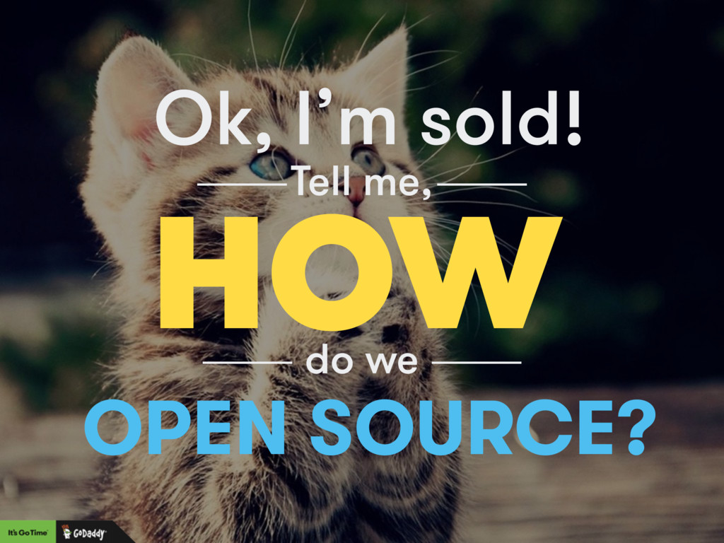 Ok, I'm sold! HOW Tell me, do we OPEN SOURCE?