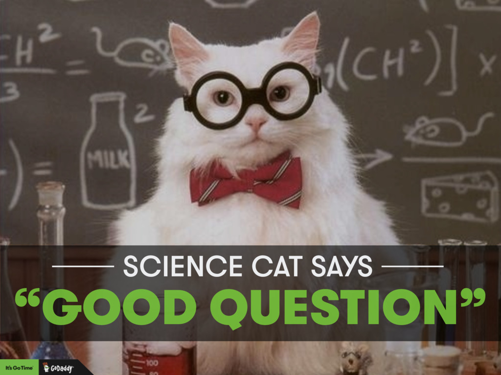"""SCIENCE CAT SAYS """"GOOD QUESTION"""""""