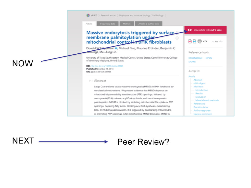 NOW NEXT Peer Review?