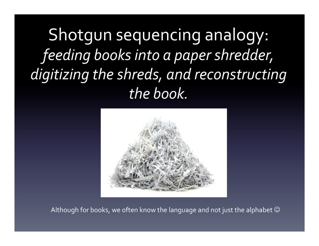 Shotgun	