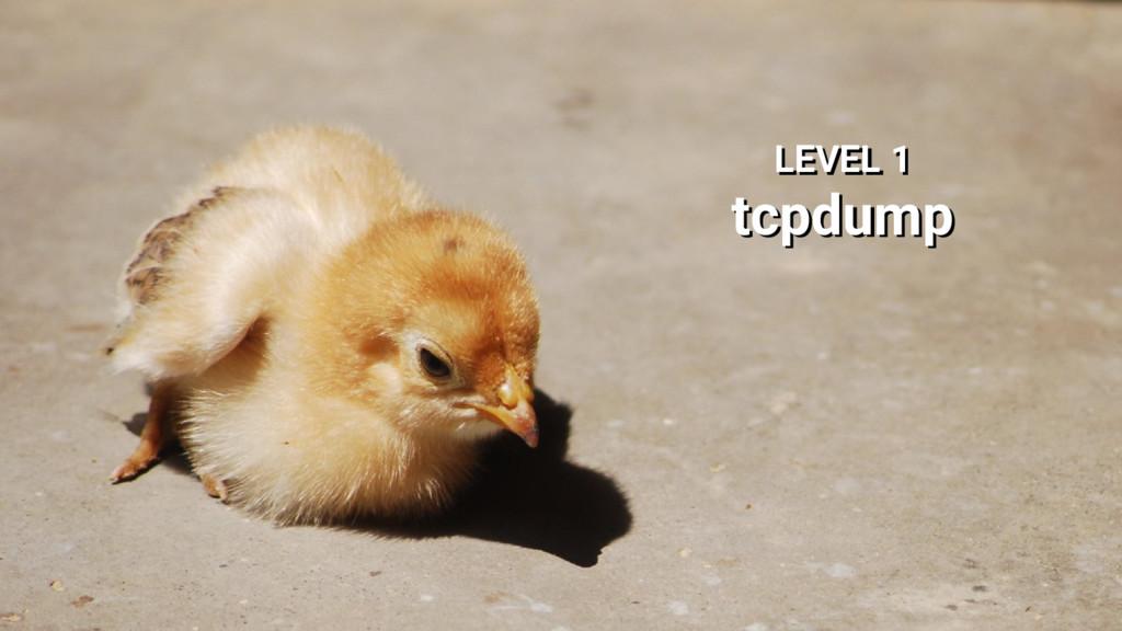 LEVEL 1 tcpdump LEVEL 1 tcpdump