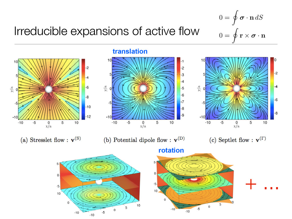 Irreducible expansions of active flow rotation 0...