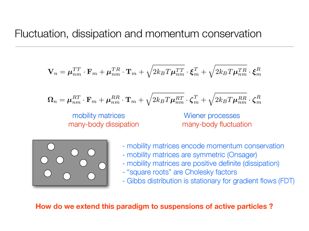 Fluctuation, dissipation and momentum conservat...