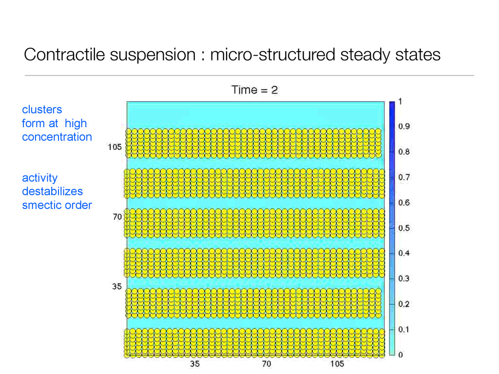 Contractile suspension : micro-structured stead...