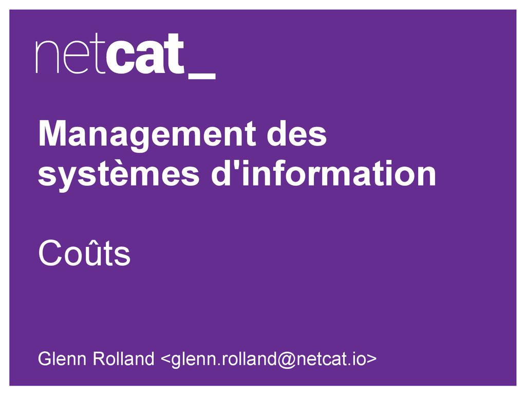 Management des systèmes d'information Coûts Gle...