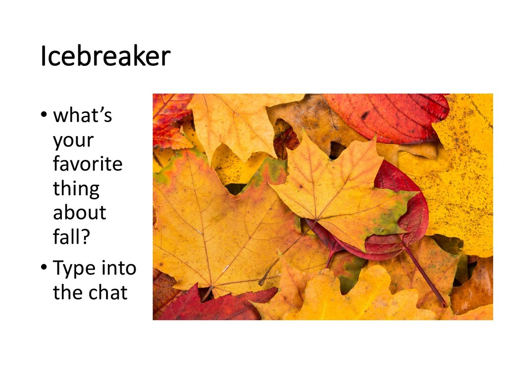 Icebreaker • what's your favorite thing about f...
