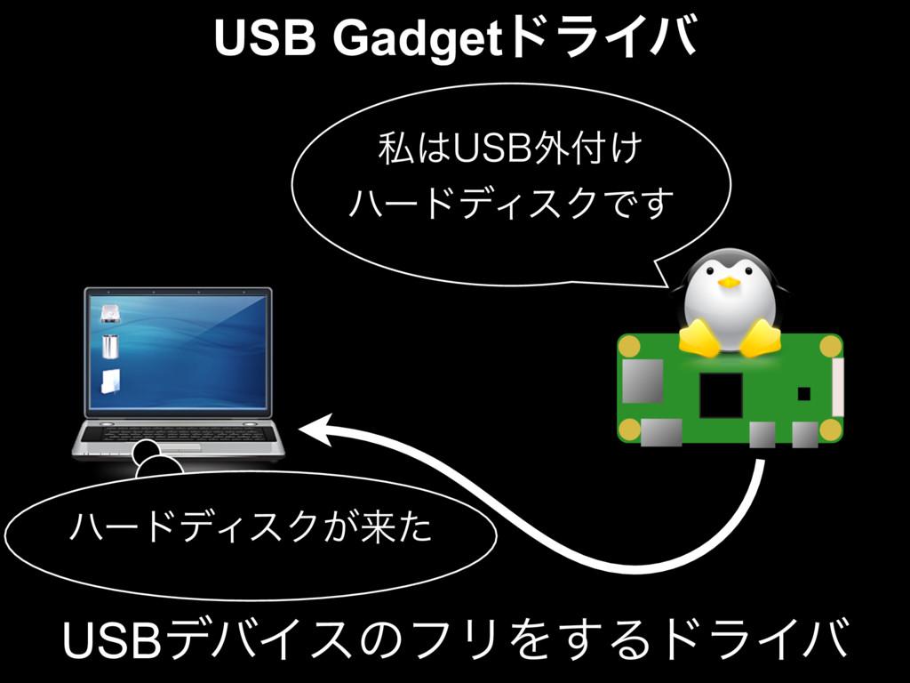 USB GadgetυϥΠό ࢲ64#֎͚ ϋʔυσΟεΫͰ͢ ϋʔυσΟεΫ͕དྷͨ U...