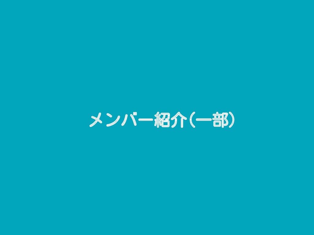 メンバー紹介(一部)