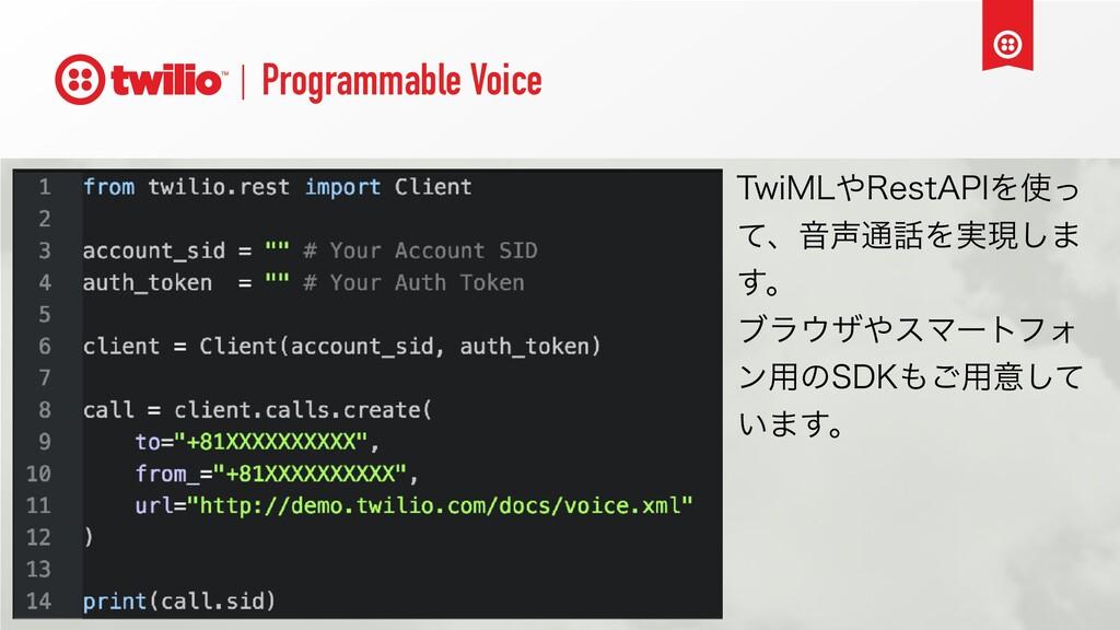 "Programmable Voice 5XJ.-3FTU""1*Λͬ ͯɺԻ௨Λ࣮ݱ͠·..."