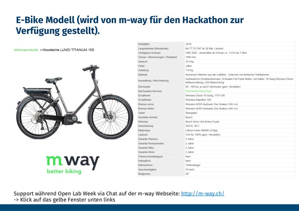 E-Bike Modell (wird von m-way für den Hackathon...